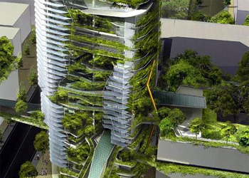 Vertical Farming: The future of urban agriculture?